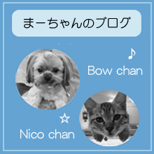 まーちゃんのブログ